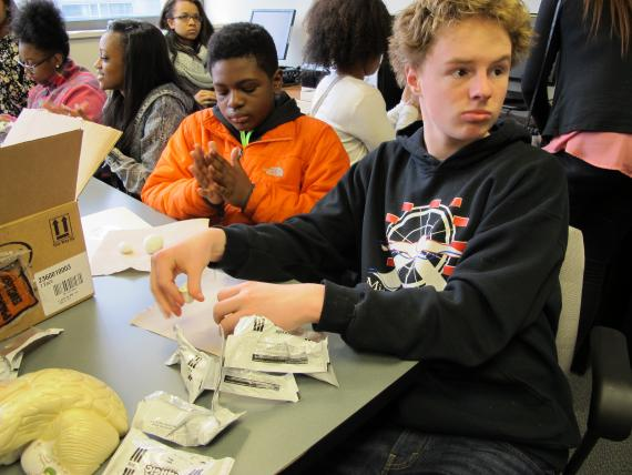 Students make clay brains as part of Brain Awareness Day. Photo by RCC.